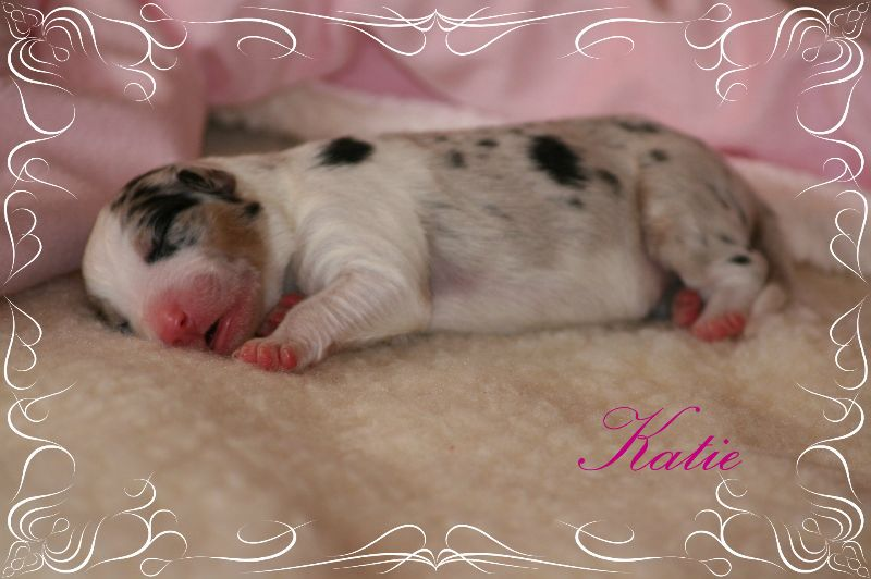 www.kizoa.com_djuna babys neu 15.05.2015 1913 katie